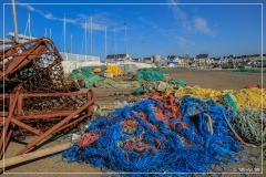 IMG_0737 (09-03-2012) couleurs