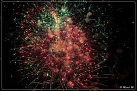 IMG_2652 (14-07-2014)_deR_1200_web